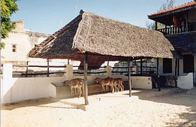 Donkey Hospital, Lamu, Kenya (June 30, 2001).jpg