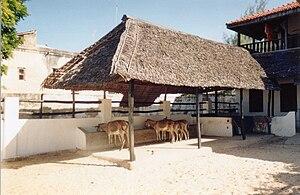 The Donkey Sanctuary - A feeding shelter, established by the Donkey Sanctuary in 1987, in Lamu, Kenya.