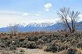 Douglas County - panoramio (79).jpg