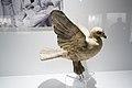 Dove of peace (26712662588).jpg
