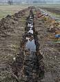 Drainage ditch - geograph.org.uk - 1100523.jpg