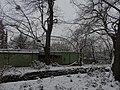 Dresden Zoo (1115).jpg