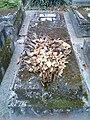 Dried flowers on grave.jpg