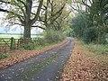 Drive to Sezincote - geograph.org.uk - 1579646.jpg