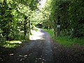 Driveway to Church House - geograph.org.uk - 892784.jpg