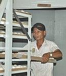 Duck egg hatchery in Can Tho (14239816331).jpg