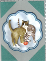 Dyrekort - katte.png