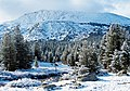 Early Snow, Yosemite High Country 2015 (32651222015).jpg