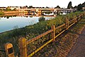 Early morning, Thames and Hampton Court bridge. - panoramio.jpg