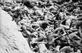 Eines von 3 Massengräbern in Bergen-Belsen, so wie es von den Befreiern vorgefunden wurde, 1945.jpg