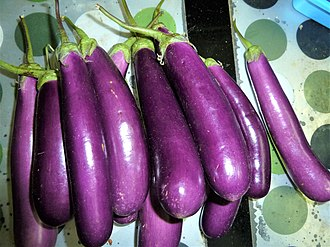 Eggplant - Long purple eggplants