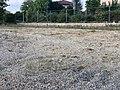 Emplacement Ancienne école maternelle St Cyr Menthon 11.jpg