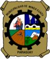Escudo Minga Guazú.png