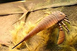Секс 100 миллионов лет назад только картинок