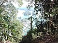 Evergreen Bangladesh.jpg