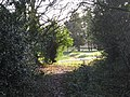 Exit from tree lined path to Walmley Golf Course - geograph.org.uk - 1634131.jpg
