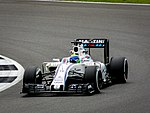 F1 - Williams F1 - Felipe Massa (28298401460).jpg