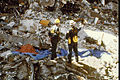 FEMA - 1262 - Photograph by FEMA News Photo taken on 04-26-1995 in Oklahoma.jpg