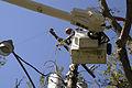 FEMA - 17005 - Photograph by Marvin Nauman taken on 10-09-2005 in Louisiana.jpg