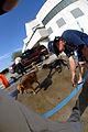 FEMA - 17769 - Photograph by Jocelyn Augustino taken on 09-07-2005 in Louisiana.jpg