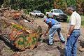 FEMA - 38850 - FEMA Debris Specialist with county workers.jpg