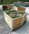 FFM-Ginnheim Hochbeetgarten 03.jpg