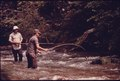 FISHERMEN CAST FOR TROUT ON THE UPPER REACHES OF THE CHATTAHOOCHEE RIVER IN THE CHATTAHOOCHEE NATIONAL FOREST ABOVE... - NARA - 557741.tif