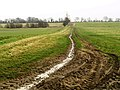 Farm track to the Lincolnshire Wolds - geograph.org.uk - 671554.jpg