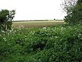 Farmland east of Snettisham - geograph.org.uk - 1300354.jpg