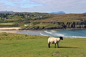 Farr Bay looking from Crask.jpg