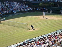 2006年温布尔登网球锦标赛男子单打比赛