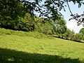 Field below Cerbynau - geograph.org.uk - 1334013.jpg