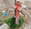 Fire hydrant in Corvara.jpg