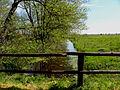 Fischland, Dierhagen22.jpg