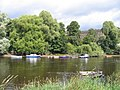 Fishing Boats on the River Dee - geograph.org.uk - 497855.jpg