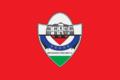 Flamuri i Preshevës.png