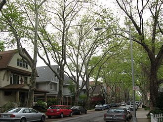 Flatbush, Brooklyn - Victorian Flatbush, at Ditmas Avenue east of Coney Island Avenue