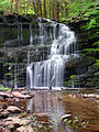 Flickr - Nicholas T - Rosecrans Falls (1).jpg