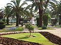 Flower garden in ramat gan.jpg