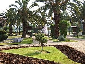 Flower garden in ramat gan