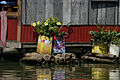 Flowers (3748758193).jpg