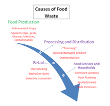 Food Waste Process.png
