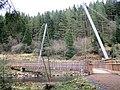 Foot Bridge over Lewis Burn - geograph.org.uk - 1155259.jpg