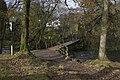 Footbridge over Great Langdale Beck near Chapel Stile - geograph.org.uk - 1570448.jpg