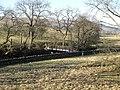 Footbridge over the River West Allen - geograph.org.uk - 704677.jpg