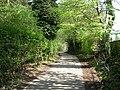 Footpath - Alwoodley Lane - geograph.org.uk - 791278.jpg