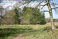 Footpath at Chisley Vale - geograph.org.uk - 405115.jpg