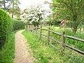 Footpath by Abinger Manor - geograph.org.uk - 817473.jpg