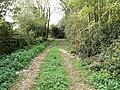 Footpath north of South Marston, Swindon - geograph.org.uk - 593154.jpg