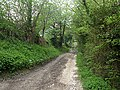 Footpath to Moel Famau - geograph.org.uk - 797962.jpg
